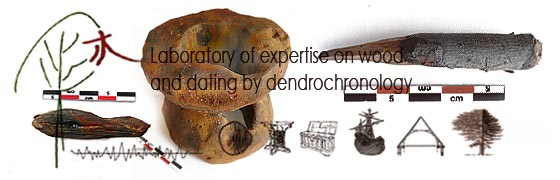 Home Page - Laboratory of expertise on wood and dating by dendrochronology