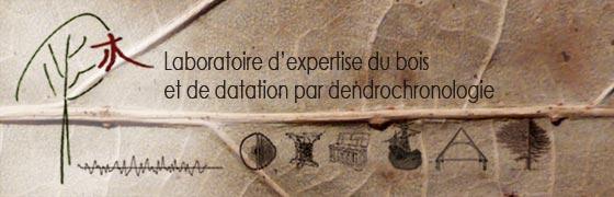 Laboratoire de dendrochronologie et d 39 expertise du bois - Ou trouver du bois pour faire des meubles ...