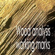 Wood analysis and working marks